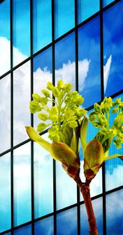 Neben der ISO 14001 Zertifizierung haben wir nun auch die EMAS-Zertifizierung, das weltweit anspruchsvollste System für nachhaltiges Umweltmanagement, erlangt.